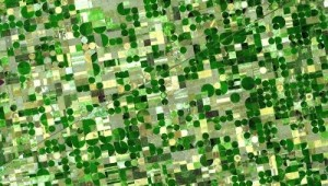 An aerial view of farms in Kansas - from Wikimedia Commons