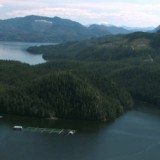 An open net fish farm in BC's Broughton Archipelago