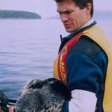 Dr. Peter Ross has published world-renowned scinece on pollution and marine mammal health during his 13 years at DFO