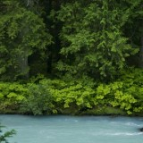 Photos courtesy of Valhalla Wilderness Society