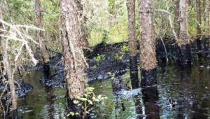 First Nation upset CNRL is draining lake to contain Alberta bitumen leak