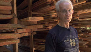 Cortes community forestry offers alternative to industrial logging