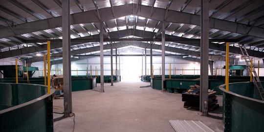Inside Kuterra plant