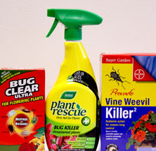 Three of the most common household neonics, according to The Soil Association.