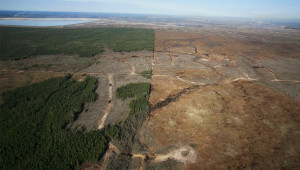 Canada surpasses Brazil as global leader in deforestation