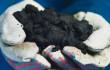 Alberta bitumen (Source: Suncor)