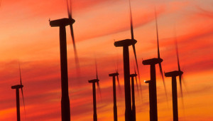 Wind power cost plummets to all-time low as capacity grows