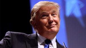 Why Donald Trump will likely beat Hillary Clinton