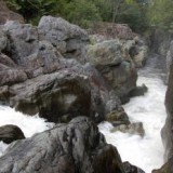 The Kokish River on North Vancouver Island (photo: the Wilderness Committee)