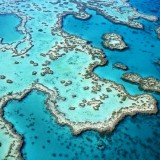 Australia's Great Barrier Reef is just one of the world's coral reef's under attack by increasing ocean acifdification (National Geographic photo)