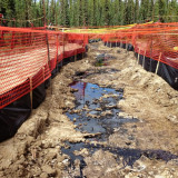 Yet another CNRL leak probed by Alberta regulator in Cold Lake