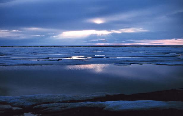 Study: Arctic getting darker, making Earth warmer