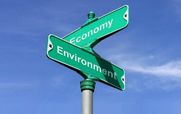 Green jobs see big growth