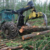 BC govt axes tree farm licence changes over widespread opposition