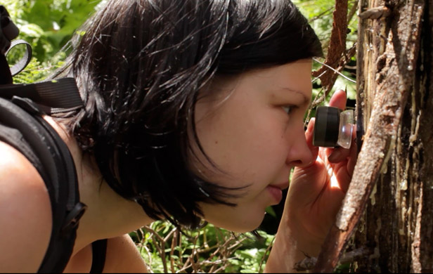 Biologist Veera Tuovinen taking stock of the Incomappleux's biodiversity